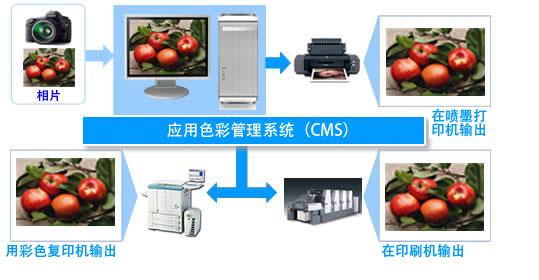 CMS图像